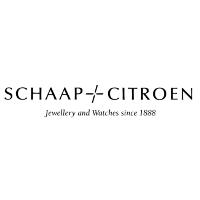 Schaap & Citroen, Biënnale Brabant